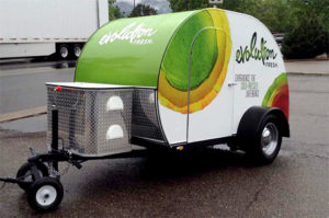 Custom Teardrop Trailer